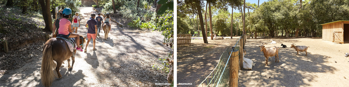 Jardin et parcs naturels à la Tranche-sur-Mer