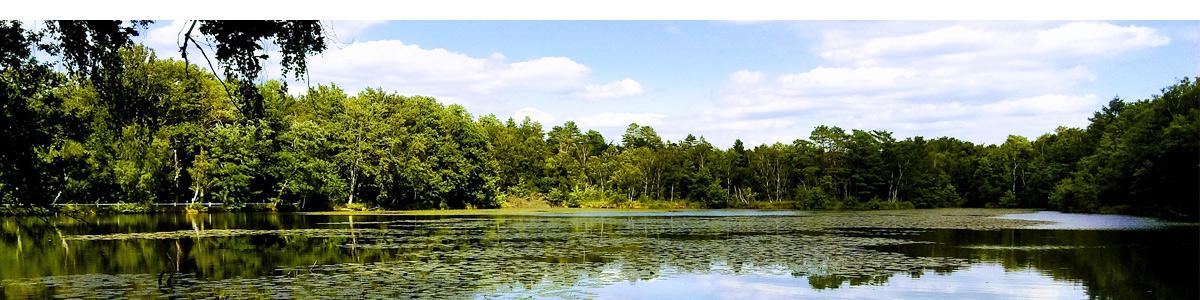 La Sologne et ses paysages naturels